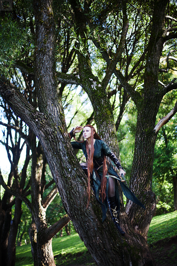 the_hobbit_by_fiora_solo_top-d89bv05 Cosplay - The Hobbit - Tauriel #37