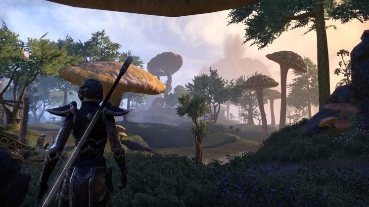 the-elder-scrolls-online-morrowind-test-review-screen-1-746x420 The Elder Scrolls Online - Morrowind