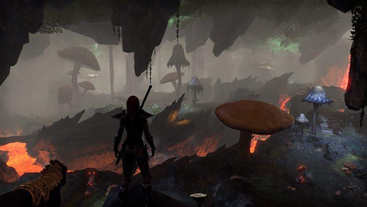 the-elder-scrolls-online-morrowind-test-review-screen-4-746x420 The Elder Scrolls Online - Morrowind