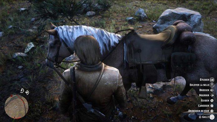 cheval_care-696x392 Mon avis sur Red Dead Redemption II - Paré pour la grande épopée ?